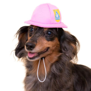 ピンク かわいいかわいい犬の一年生 かぶりものシリーズ(犬)
