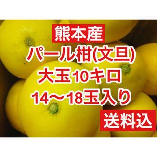 熊本産  大玉パール柑(文旦) 14玉〜18玉 約10キロ  送料込