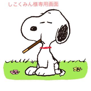 しこくみん様専用画面(アルバム)