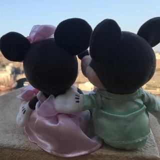 ディズニー(Disney)のディズニー リゾートラインチケット 未使用 大人二枚(その他)
