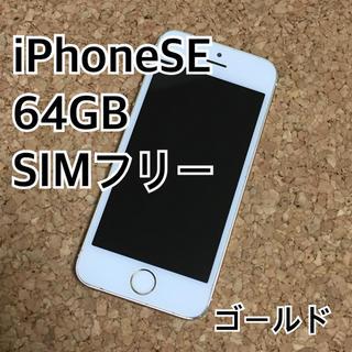 アイフォーン(iPhone)のiPhoneSE 64GB SIMフリー ゴールド(スマートフォン本体)