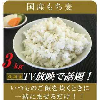 もち麦 国産 3kg ダイエット 健康食品 デブ菌撃退(米/穀物)