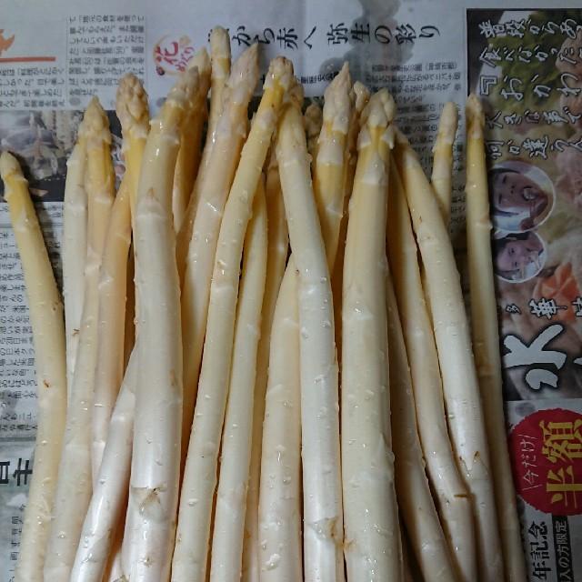 佐賀県産ホワイトアスパラ1キロ(訳あり) 食品/飲料/酒の食品(野菜)の商品写真