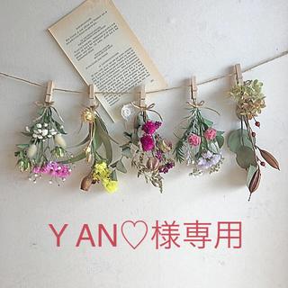 Y AN♡様専用ドライフラワーガーランド(ドライフラワー)
