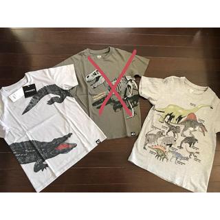 ユニクロ(UNIQLO)のユニクロ★ディスカバリーチャンネルグラフィックT3枚セットワニ、恐竜(Tシャツ/カットソー)