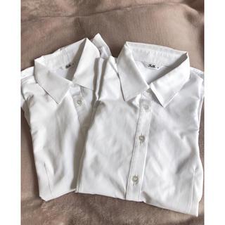 Yシャツ 2枚セット 7号(シャツ/ブラウス(長袖/七分))