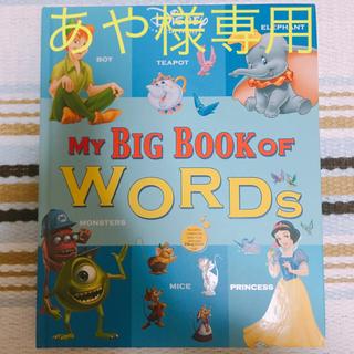ディズニー(Disney)のMY BIG BOOK OF WORDS  ディズニー英語システム DWE(洋書)