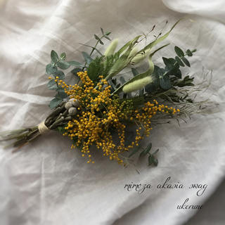 爽やかな香りに包まれる ユーカリとミモザの草原 スワッグ ドライフラワー(ドライフラワー)