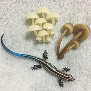 奇譚クラブ キノコ カナヘビ マグネット 磁石(その他)