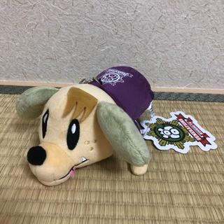 ジェネレーションズ(GENERATIONS)のジェネ犬 パスケース 白濱亜嵐(アイドルグッズ)