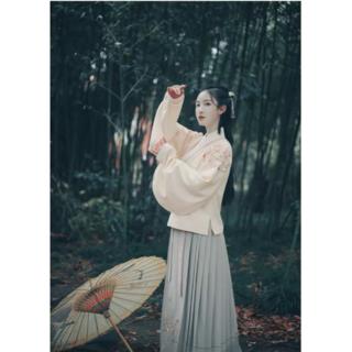 美しい仙女  中国唐装漢服広い袖 コスプレ/cosplay衣装(その他ドレス)