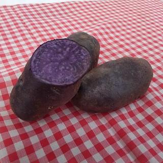 紫なじゃがいも シャドークイーン(野菜)