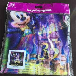 ディズニー(Disney)の【引っ越し一掃】【送料込】35周年 東京ディズニーランド ウォッシュタオル(タオル)