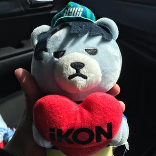 アイコン(iKON)のIKON マスコット ぬいぐるみ ユニョン(K-POP/アジア)
