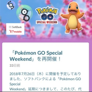 ポケモンGO 参加券(携帯用ゲームソフト)