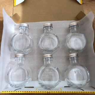 ハーバリウム瓶100ml丸型(ねこ)6本セット(その他)