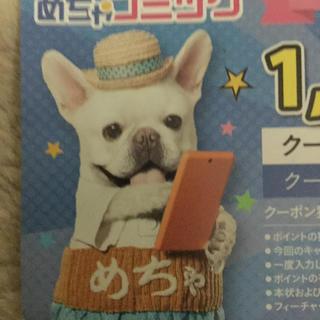 めちゃコミック 1000pt(その他)