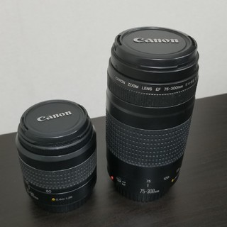 Canon - Canon ZOOM LENS EF 75-300mm