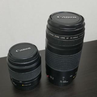 キヤノン(Canon)のCanon ZOOM LENS EF 75-300mm(レンズ(ズーム))