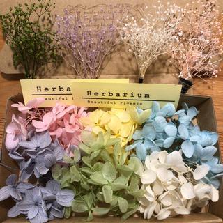 紫陽花、かすみ草ボックス①(ドライフラワー)