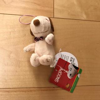 スヌーピー  ぬいぐるみ マスコット 日焼けスヌーピー  (ぬいぐるみ)