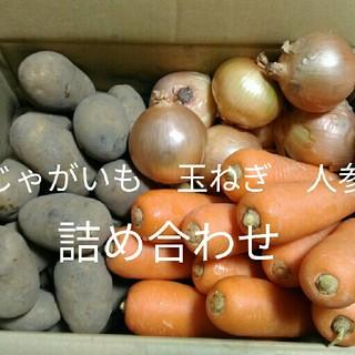 九州産✨新じゃがいも、玉ねぎ、人参の詰め合わせをお届けいたします(野菜)