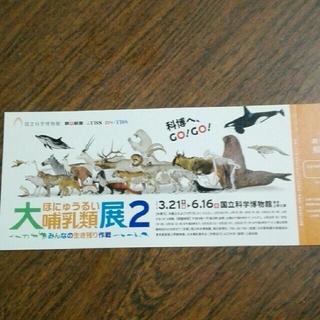 大哺乳類展2  観賞券(美術館/博物館)