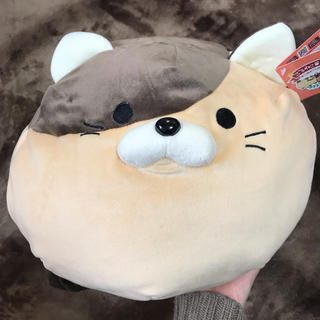 ドウシシャ(ドウシシャ)の第13回 ごろねこサミット ナカジマ 猫 クッション(ぬいぐるみ)