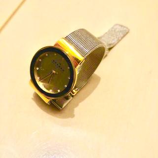 スカーゲン(SKAGEN)のSKAGEN レディース時計(腕時計)