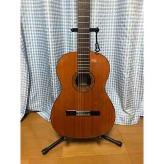アリアカンパニー(AriaCompany)の最終値下げ! クラシックギター ARIA(クラシックギター)