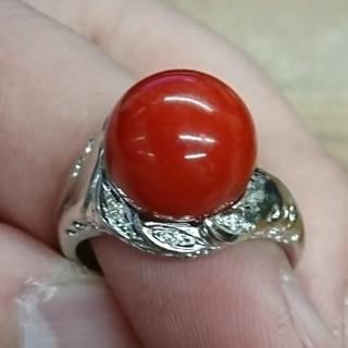 血赤珊瑚 11.5mm プラチナリング(リング(指輪))