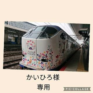 かいひろ様 専用(その他)