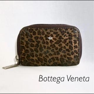 ボッテガヴェネタ(Bottega Veneta)のBottega Veneta ヒョウ柄 コインケース  (コインケース)