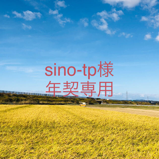 【sino-tp様 年契専用】令和2年度 こまち、ひとめ精米各10Kg×8(米/穀物)