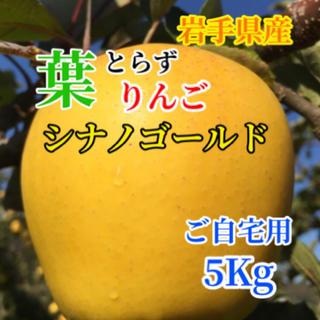 【送料込】葉とらずりんご シナノゴールド バラ詰め15〜18個前後 約5kg (フルーツ)