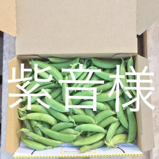鹿児島産スナップエンドウ500g^_^(野菜)