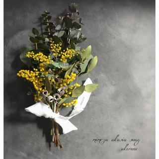 ミモザとテトラゴナ、ユーカリの香りに包まれる春の贈り物 スワッグ ドライフラワー(ドライフラワー)
