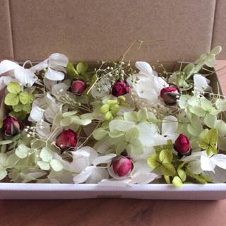 グリーン&ホワイト 花材 アソートボックス(プリザーブドフラワー)