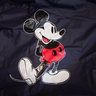 ディズニー(Disney)の東京ディズニーリゾート ポンチョ(レインコート)