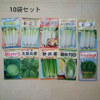 ブルースター様専用  トーホク 野菜のタネ 未開封 10袋セット② 種(野菜)