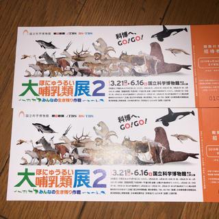 大哺乳類展2   2枚(美術館/博物館)