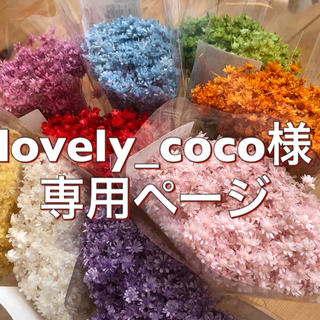 lovely_coco様専用ページ(ドライフラワー)