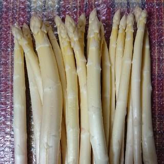 佐賀県産ホワイトアスパラ1キロ(野菜)