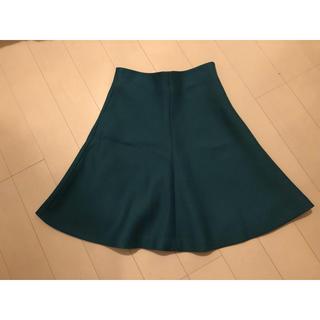 ニジュウサンク(23区)の23区 スカート 緑(ひざ丈スカート)