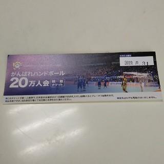 公益財団法人 日本ハンドボール協会 観戦チケット(その他)