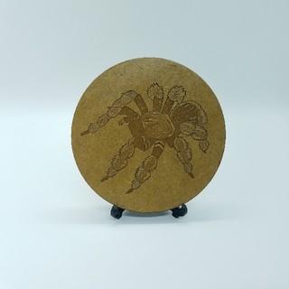 木製コースター タランチュラ(おもちゃ/ペット小物)