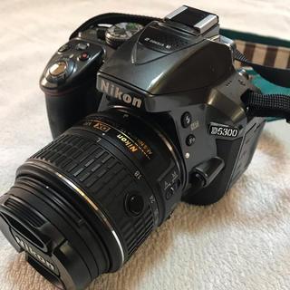 ニコン(Nikon)のNIKON D5300(デジタル一眼)