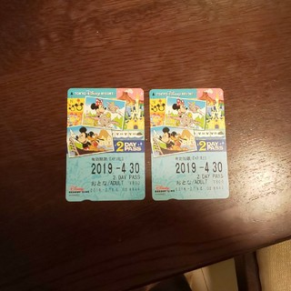 ディズニー(Disney)のディズニーリゾートライン  大人 2DAYパス 二枚(鉄道乗車券)