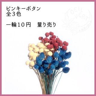 【1本10円】ピンキーボタン 全3色 量り売り(ドライフラワー)