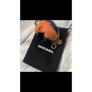 ディーゼル(DIESEL)のマルチカラーファーチャームキーホルダー diesel ディーゼル(キーホルダー)